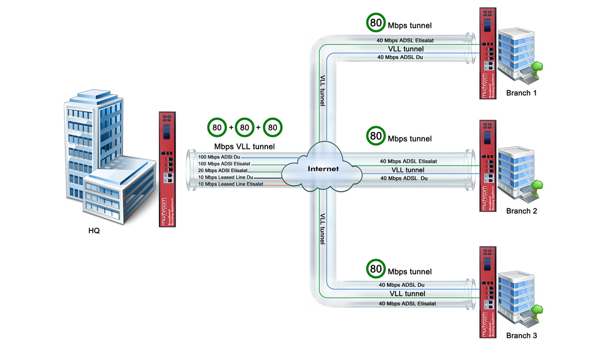 Mushroom Networks Virtual Leased Line (VLL)